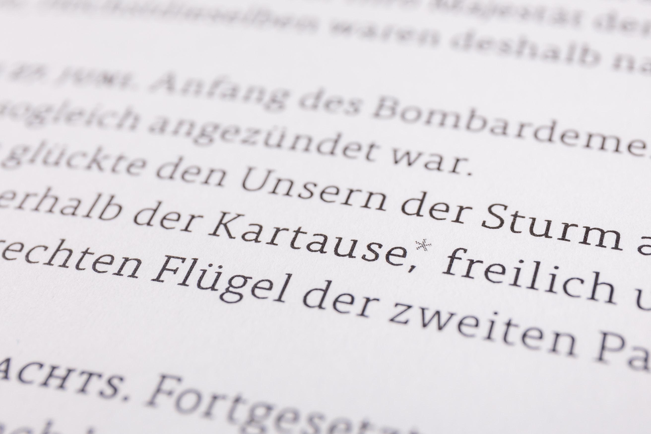 Detail manuelle Spationierung, Belagerung von Mainz